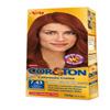 Tinta para cabelo Cor & Ton Niely louro acobreado dourado 7.43