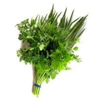 Cheiro verde coentro e cebolinha maço