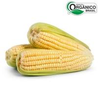 Milho verde orgânico 500g